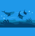 ocean wildlife nature panoramic flat style banner vector image vector image