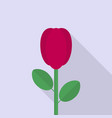 rose icon set of great flat icons with style vector image