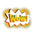 Wow lettering in cartoon comic bubble vector image
