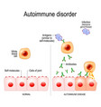 autoimmune disease vector image vector image