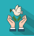 hands with dove branch olive symbol peace vector image vector image