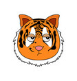 head of tiger in cartoon style kawaii animal vector image