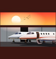 Luxury business jets at sunset vector image