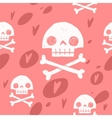 Pirate cartoon skull flag party card vector image vector image