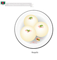 Rasgulla or Bangladeshi Milk Ball With Sweet Syrup vector image vector image
