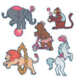 set of circus trained wild animals performance vector image