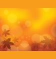 autumn theme background 1