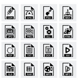 File type icon set vector image