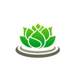 lotus flower spa logo vector image vector image