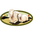 oval frame with ewe and her lamb vector image vector image