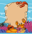 paper template with sea animals underwater vector image vector image