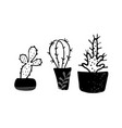 set cactuses hand drawn vector image vector image