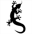 silhouette lizard vector image
