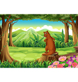 A wild animal above the stump at the forest vector image vector image
