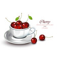 cherry fruits in a cup realistic fruits vector image vector image