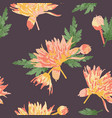 coral and orange mums on dark brown background vector image vector image