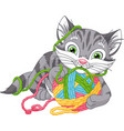 gray kitten playing vector image vector image