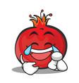 joy face pomegranate cartoon character style vector image vector image