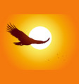 soaring eagle vector image