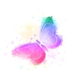 butterfly watercolor background vector image vector image