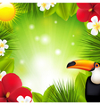 Green Background With Tropical Elements And vector image