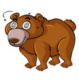 grizzly bear with dizzy eyes vector image