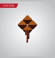 isolated cocoa flat icon delicious element vector image