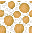 pumpkin seed pattern vector image vector image