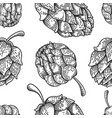 seamless pattern with beer hop in engraving style vector image vector image