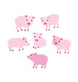 set of cartoon cute pigs in vector image