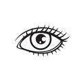 woman eye outline icon vector image