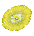 A yellowgreen flower vector image vector image