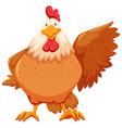 Chicken vector image