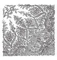 lace shawl was made using a pusher bobbin net vector image vector image