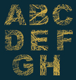 Ornamented letters vector image vector image