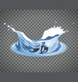 transparent water splash isolated on light vector image vector image