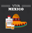 viva mexico hispanic event poster vector image