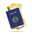 air ticket golden and pass vector image