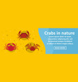 crabs in nature banner horizontal concept vector image vector image