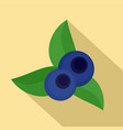 eco blueberry icon flat style vector image