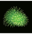 Green fireworks on dark background vector image vector image