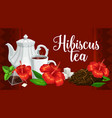 herbal tea hibiscus flower teabags and teapot vector image