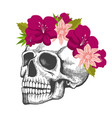 human skull sketch with floral wreath isolated vector image vector image