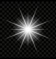 isolatedlightning vector image vector image