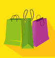 sale bags to special discount in the store vector image vector image