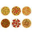 six types of pizza vector image