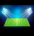 soccer field with stadium 003 vector image vector image