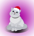 Christmas cute cat vector image vector image