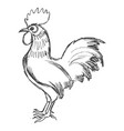 cockerel symbol of sunrise vector image
