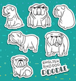 Dogs characters Doodle dog Funny animals Dog vector image